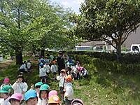 P1060552
