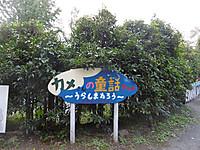 P1070463