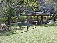 P1070528